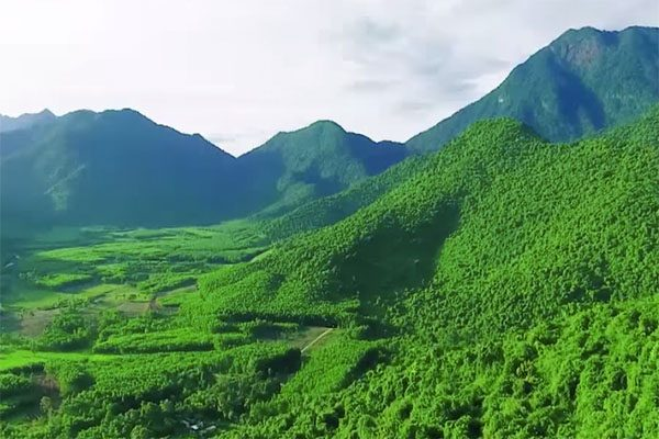 rừng quốc gia bạch mã