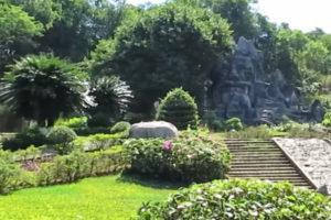 Khám Phá Khu Du Lịch Rừng Madagui.