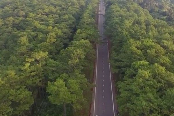 rừng kon plông