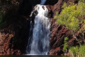 Chuyến Đi Săn Bắn Tại Úc Hấp Dẫn