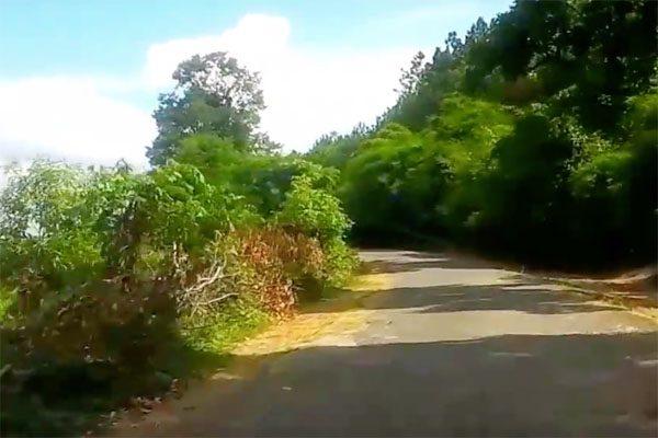 vườn quốc gia kon ka kinh 1
