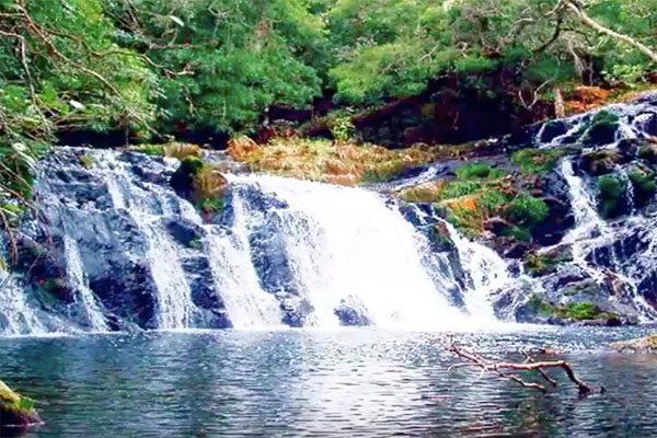 vườn quốc gia kon ka kinh 3
