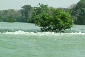 Thăm Quan Vườn Quốc Gia Yok Đôn, Đắk Lắk