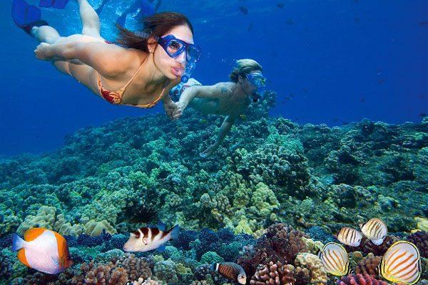 lặn biển vịnh nha trang