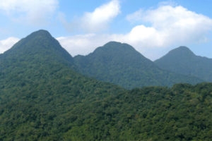 Tài Nguyên Hệ Sinh Thái Núi Rừng Với Du Lịch Việt Nam