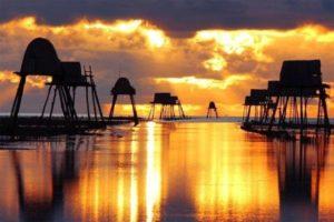 Sức Hút Của Du Lịch Biển Đồng Châu, Thái Bình