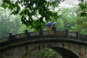 Khám Phá Kinh Thành Cổ Lam Kinh Thanh Hoá