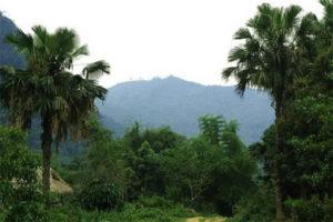 Thăm Quan Núi Thắm Phú Thọ
