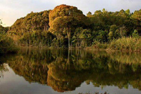 vườn quốc gia chư mom ray 1