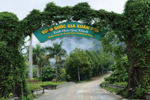 Kinh Nghiệm Du Lịch Vườn Quốc Gia Xuân Sơn Mới Nhất