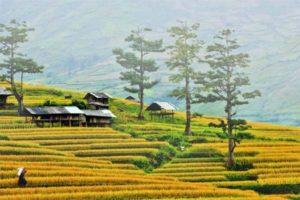 Khám Phá Vẻ Đẹp Văn hoá Làng Du Lịch Bản Lác, Hoà Bình