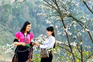 Lễ Hội Hoa Ban – Ngày Hội Văn Hoá Thể Thao Và Du Lịch Điện Biên
