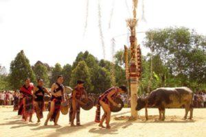 Lễ Hội Tây Nguyên- Đâm Trâu, Nét Văn Hoá Đặc Sắc Của Tây Nguyên