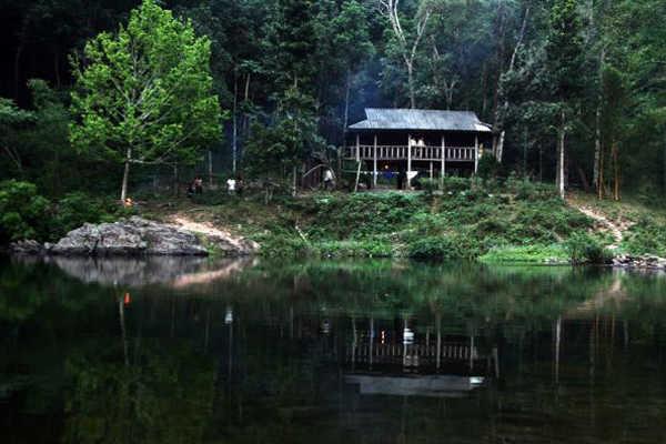 rừng cấm nguyên sinh kẽ rỗ