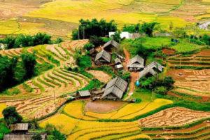 Khám Phá Thung Lũng Mường Hoa Đẹp Mê Hồn