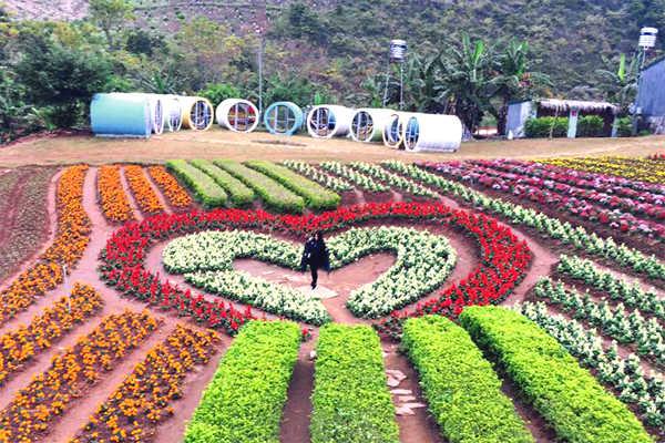 vườn hoa nhiệt đới