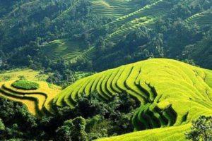 Sắc Hương Vùng Du lịch Việt Bắc