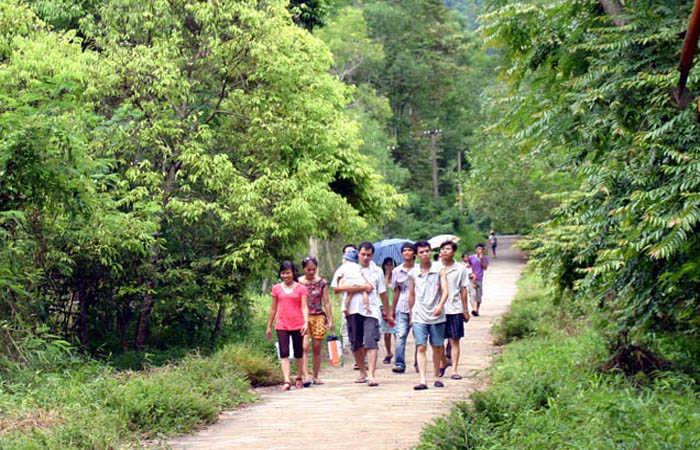 du lịch sinh thái rừng
