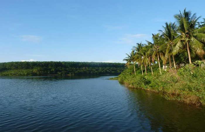 hồ suối lâm
