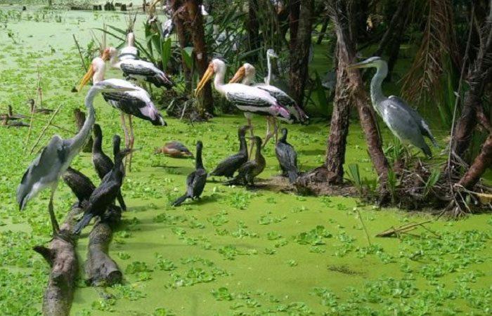 khu bảo tồn thiên nhiên ngọc hoàng