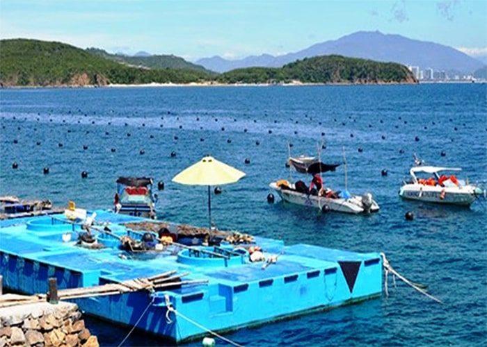 Tour Du Lịch Phú Quốc 3 Ngày 3 Đêm Câu Cá, Lặn Ngắm San Hô